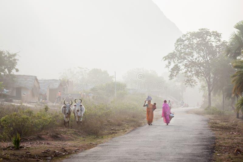 Dwa Indiańskiej kobiety iść z zakupami fotografia royalty free