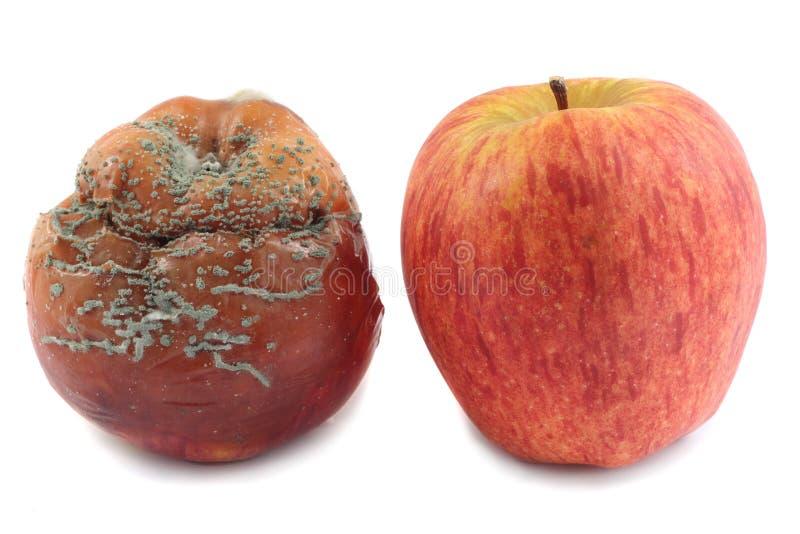 dwa jabłka zdjęcie stock