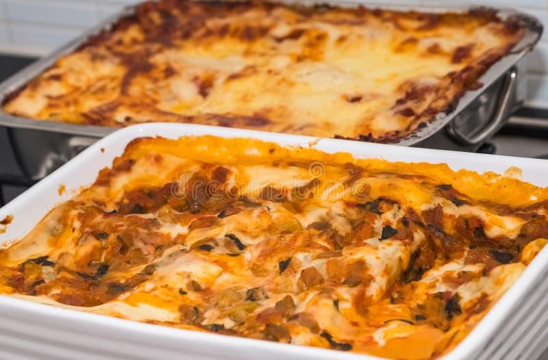Dwa jaroszy Lasagne ` s Out Ovan zdjęcia stock