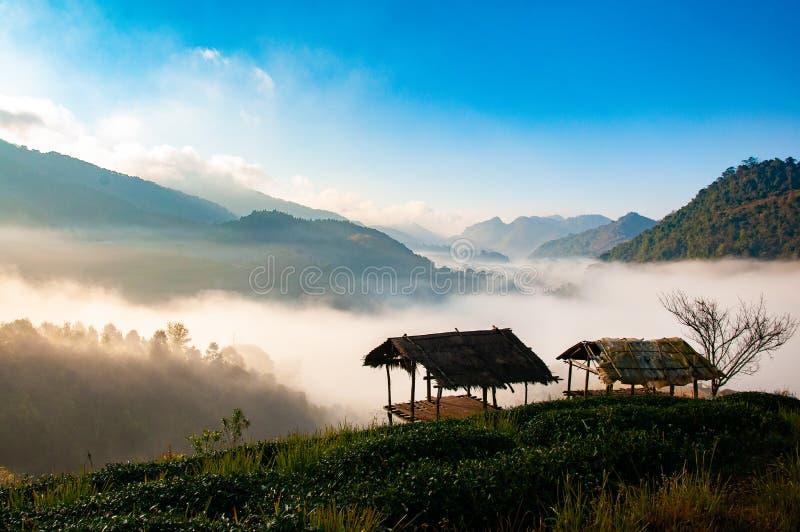 Dwa kabina z denną mgłą fotografia stock