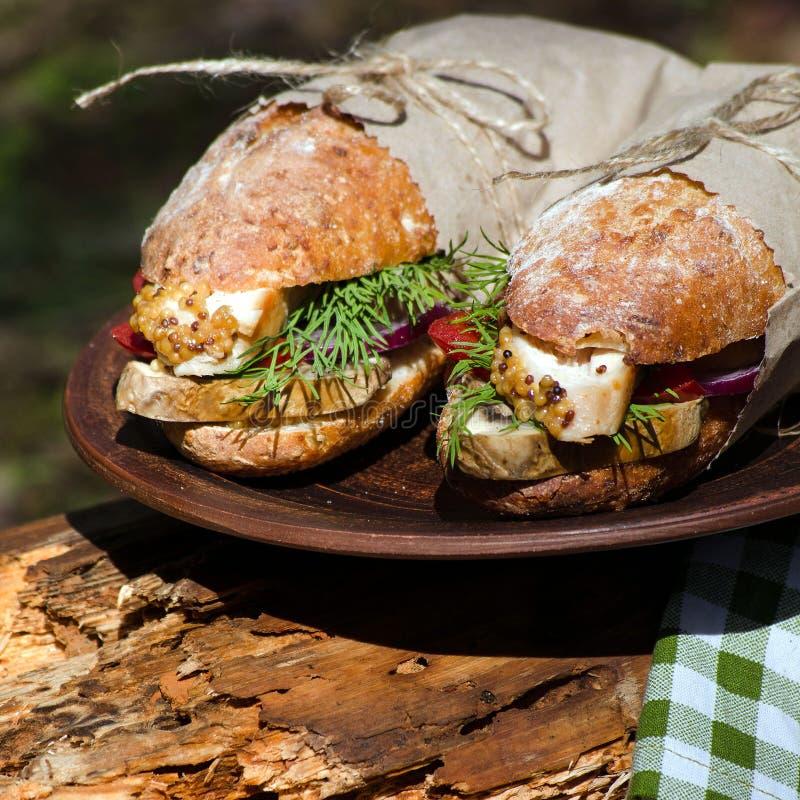 Dwa kanapki z kurczakiem przy pinkinem zdjęcia royalty free