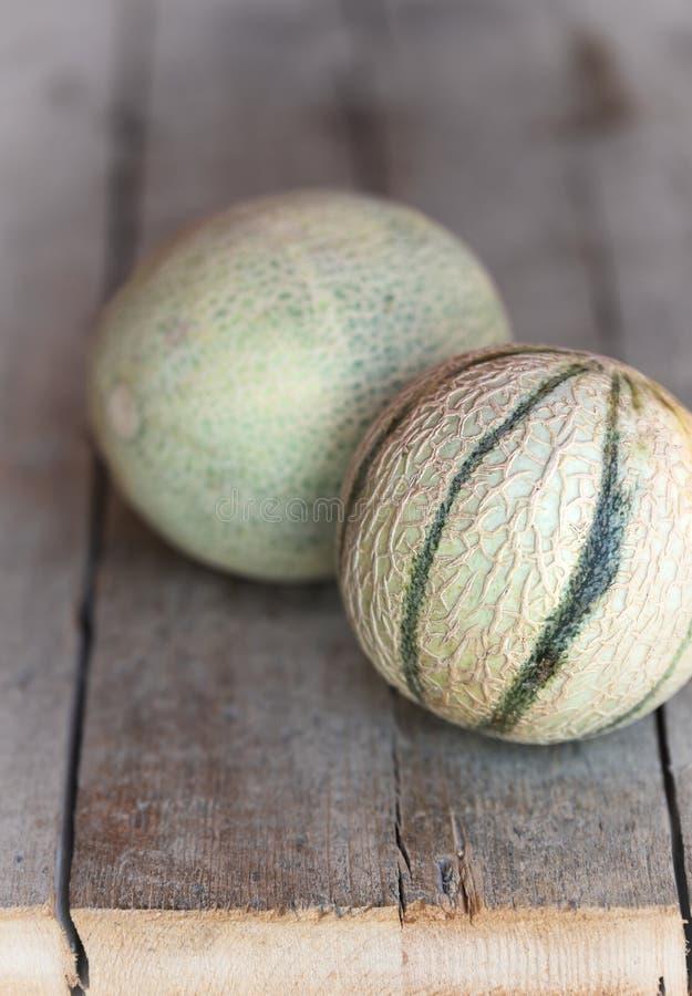Dwa kantalupa melonu zdjęcia stock