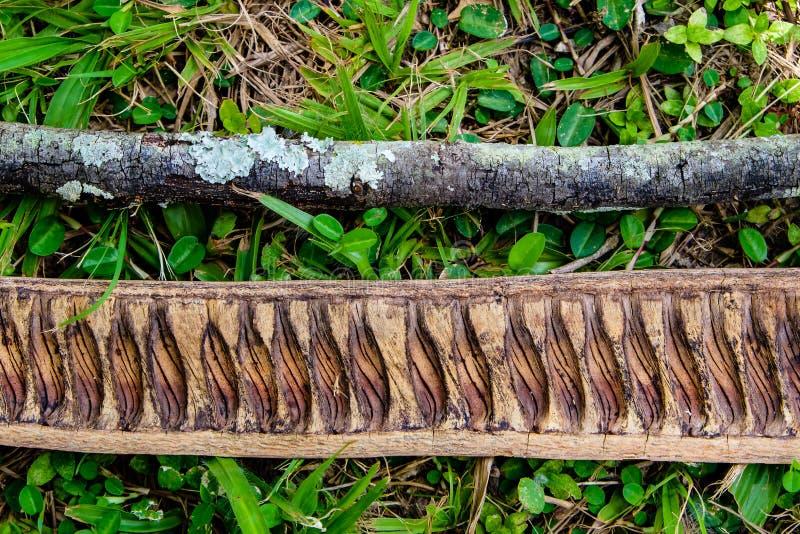 Dwa kawałka suchy drewniany lying on the beach na trawie w drewnach, tworzy pa zdjęcia royalty free