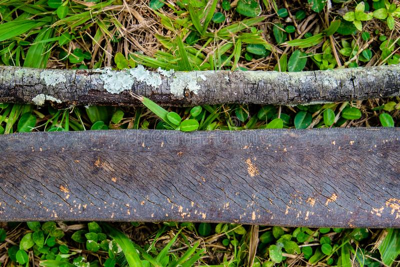 Dwa kawałka suchy drewniany lying on the beach na trawie w drewnach, tworzy pa fotografia royalty free