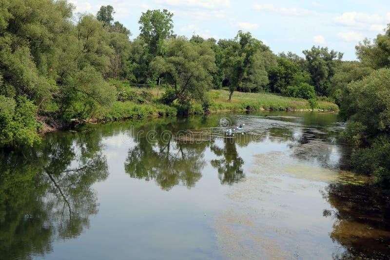 Dwa Kayakers Paddle Saugeen rzekę w Hanover, Ontario obraz stock