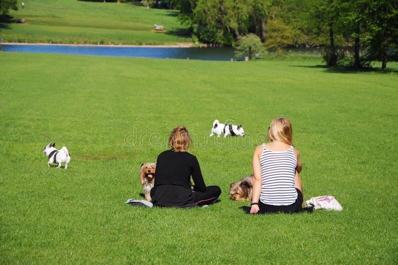 Dwa kobieta z psa odpoczynkiem w parku obrazy royalty free