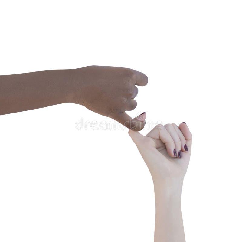 Dwa kobiety łączy ich ręki, odosobnione obrazy royalty free