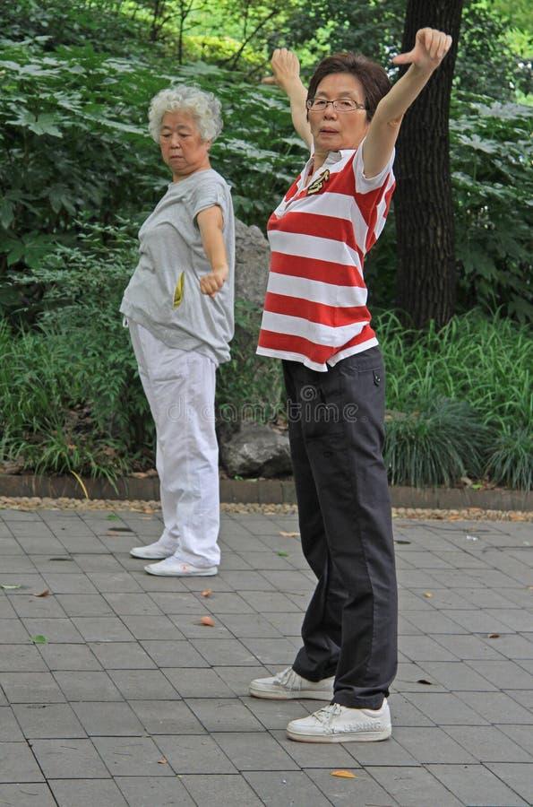 Dwa kobiety robią fizycznym ćwiczeniom w parku zdjęcie royalty free