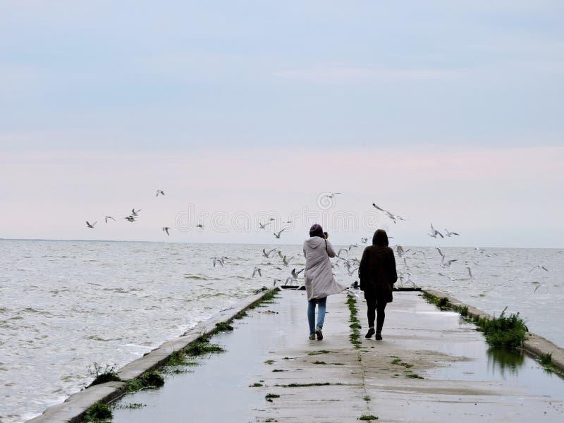 Dwa kobiety zbliżają jezioro zdjęcie royalty free