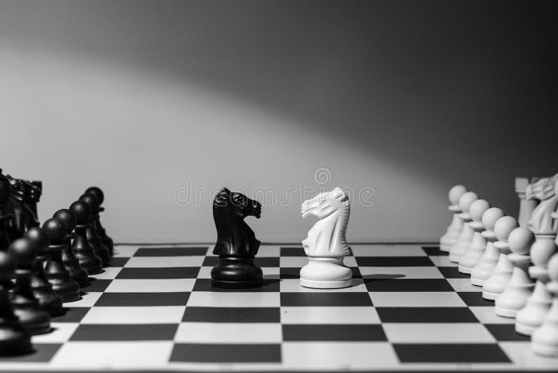 Dwa konia stawia czoło each inny, szachy fotografia royalty free