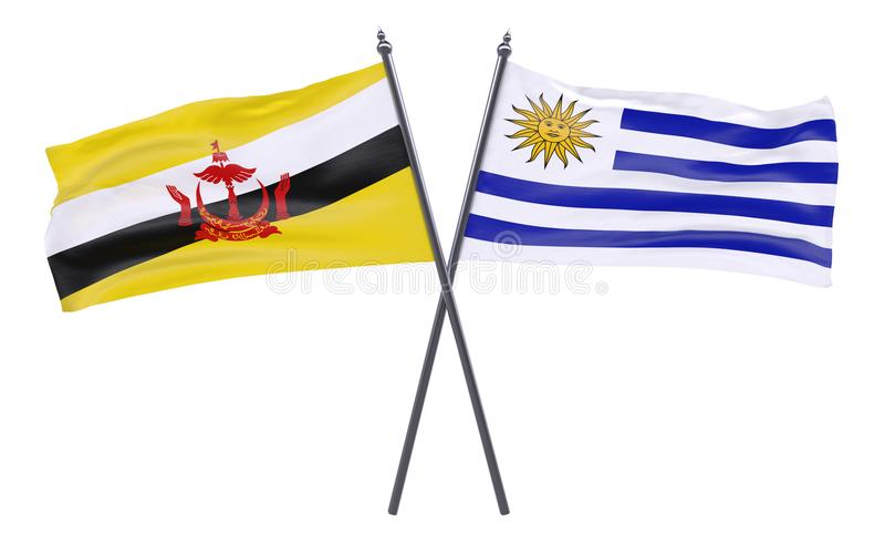 Dwa krzyżującej flaga ilustracja wektor