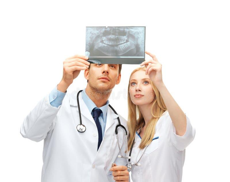 Dwa lekarka dentysty patrzeje promieniowanie rentgenowskie fotografia royalty free