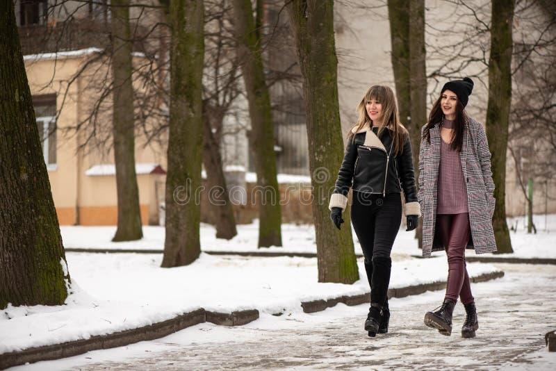 Dwa młoda elegancka kobieta chodzi w śnieżnym zima parku Pozytywne emocje na ich twarzach obrazy stock