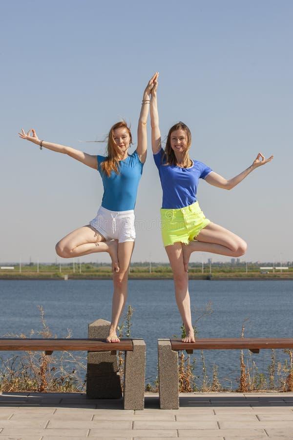 Dwa młodej kobiety robi joga przy naturą Sprawno?? fizyczna, sport, joga i zdrowy stylu ?ycia poj?cie, zdjęcie royalty free
