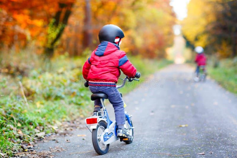 Dwa małe dziecko chłopiec jeździć na rowerze z bicyklami w jesień lasu parku w kolorowych ubraniach obraz stock