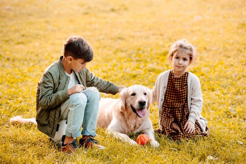 Dwa małego rodzeństwa migdali obsiadania na trawie i psa zdjęcia stock