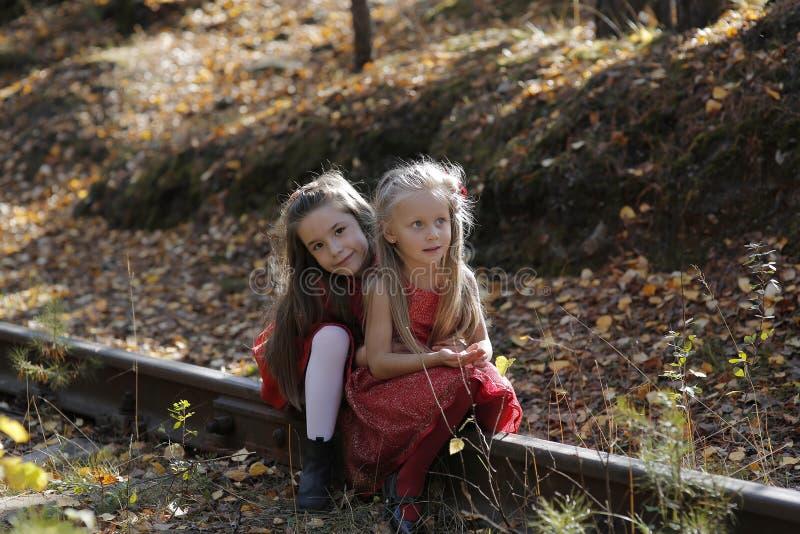 Dwa małej ślicznej dziewczyny na gazonie w parku obraz royalty free