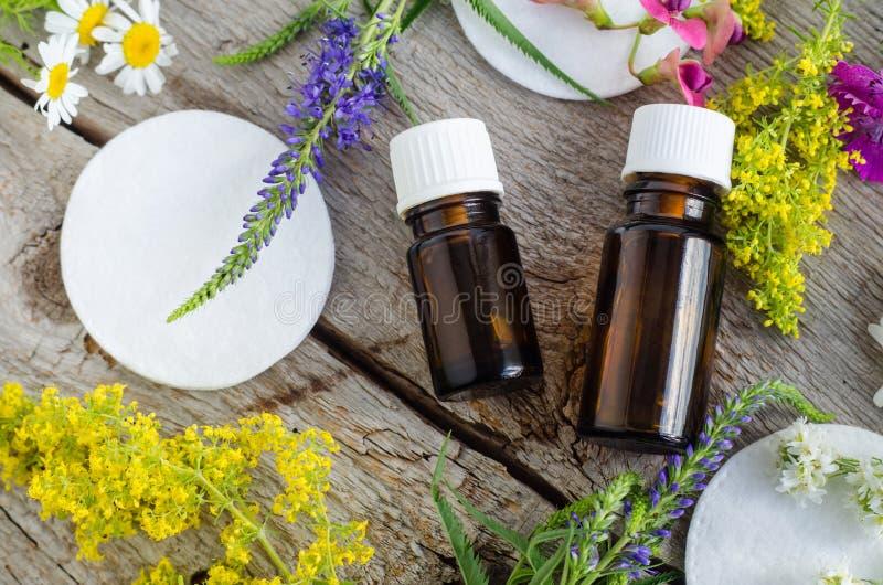 Dwa małej butelki z istotnego oleju tincture, infuzją i bawełnianym ochraniaczem, Aromatherapy i naturalny skóry opieki pojęcie obraz royalty free