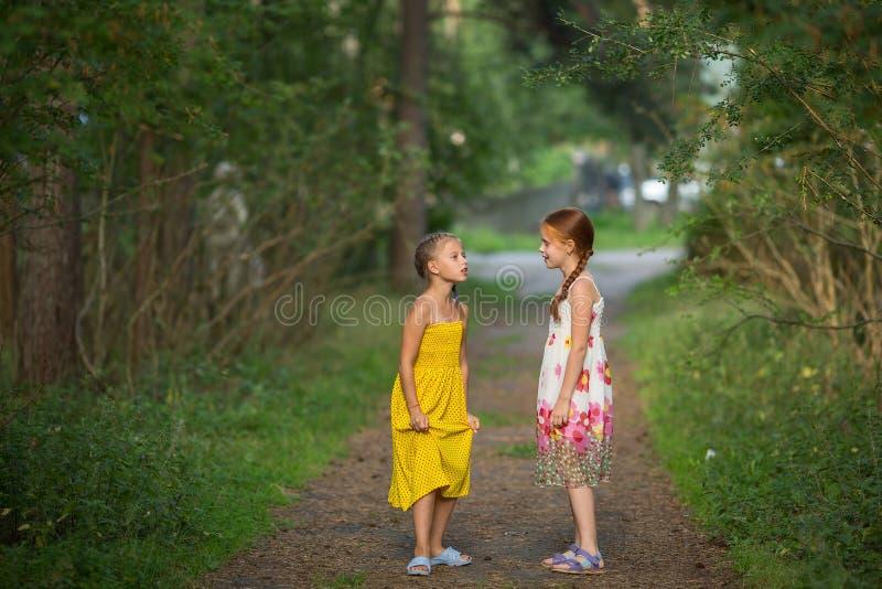 Dwa małej dziewczynki opowiada emocjonalnie stać w parku fotografia stock