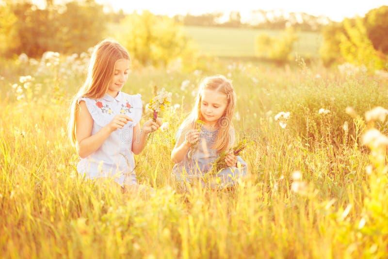 Dwa małej siostry wyplatają wianki kwiaty obrazy stock