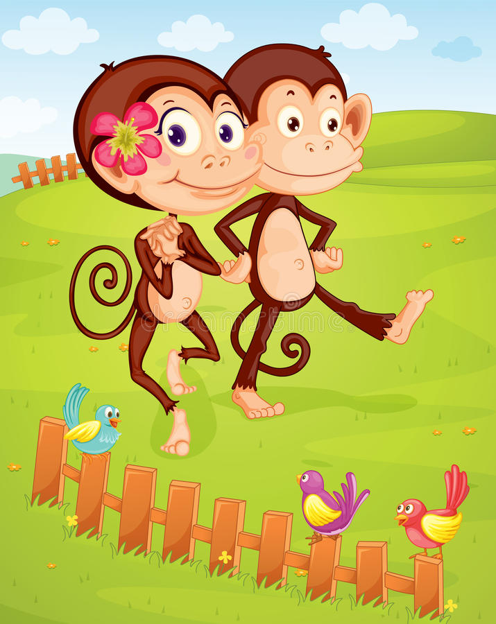 Dwa małpy ilustracji
