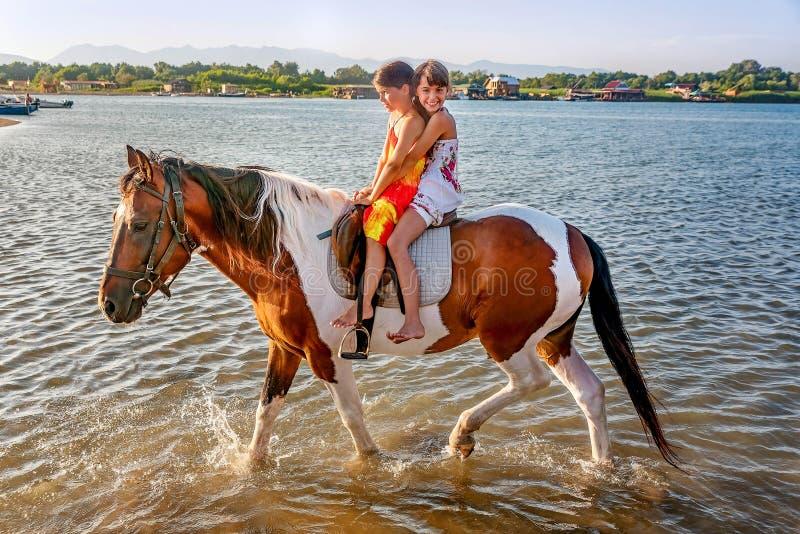 Dwa małych dziewczynek jeździecki koń w lecie w Ada Bojana, Monte zdjęcie stock