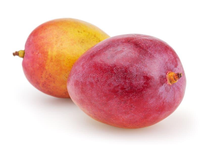 Dwa mango odizolowywającego na białym tle zdjęcie royalty free