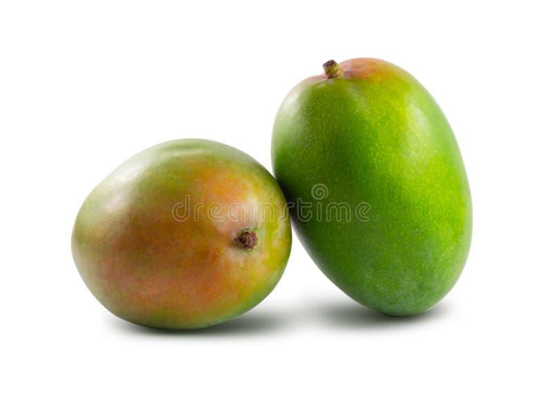Dwa mango odizolowywaj?cy na bia?ym tle obrazy stock