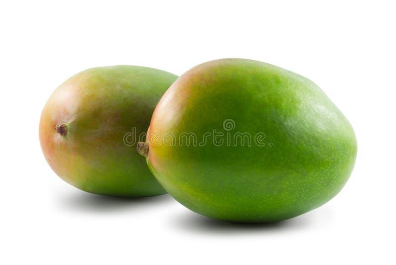 Dwa mango odizolowywaj?cy na bia?ym tle obraz royalty free