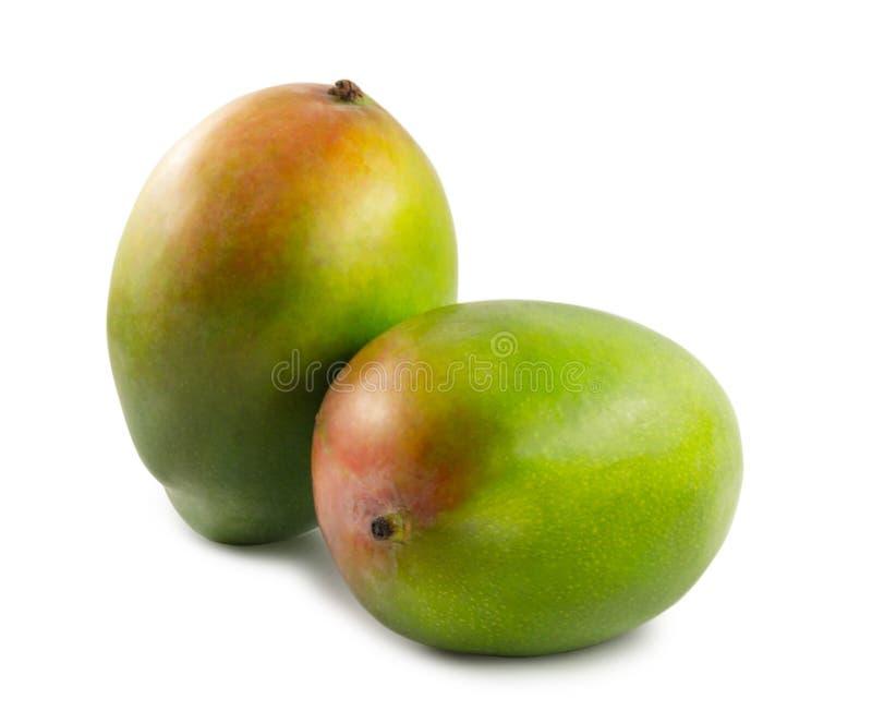 Dwa mango odizolowywaj?cy na bia?ym tle obraz stock