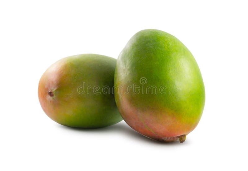 Dwa mango odizolowywaj?cy na bia?ym tle fotografia stock