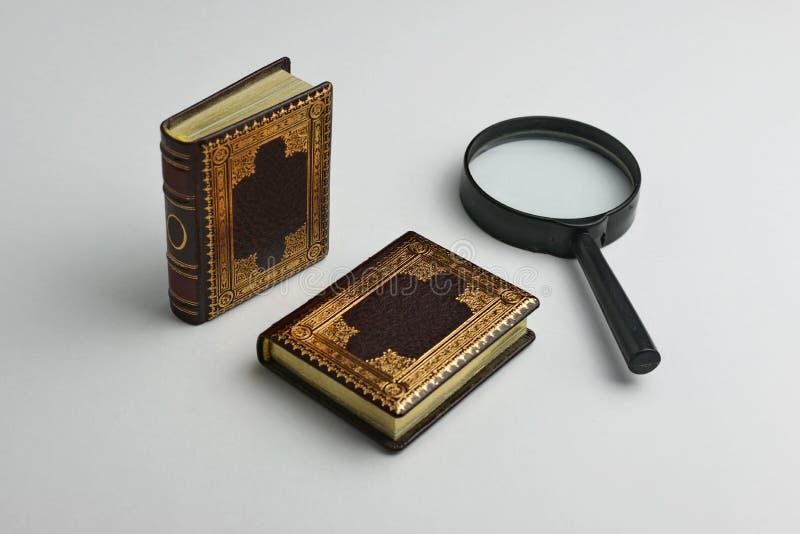 Dwa miniaturowej sk?ry ksi??ki z powi?ksza? - szk?o fotografia stock