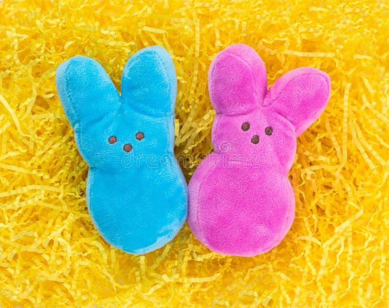 Dwa mokiet wielkanocy zabawki na żółtej Wielkanocnej trawie obraz royalty free