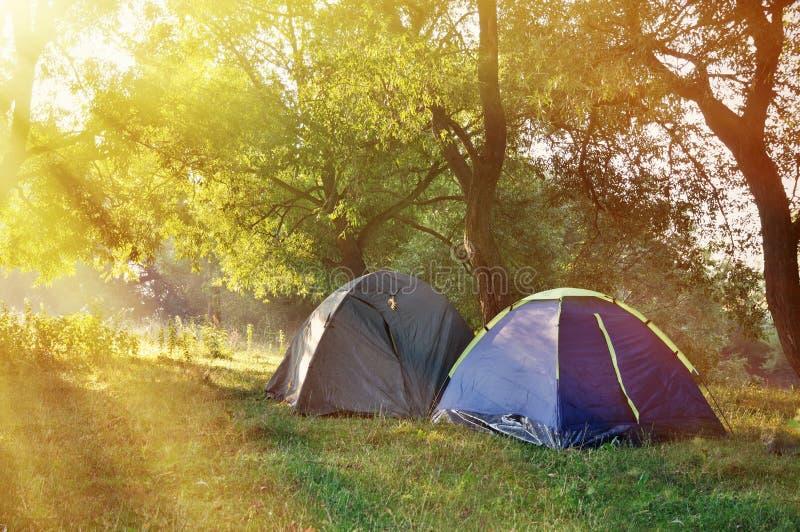 Dwa namiotu w drewnach w ranku obrazy royalty free