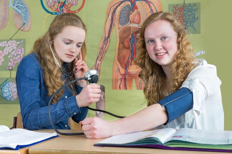 Dwa nastoletniej dziewczyny mierzy ciśnienie krwi w biologii lekci fotografia stock