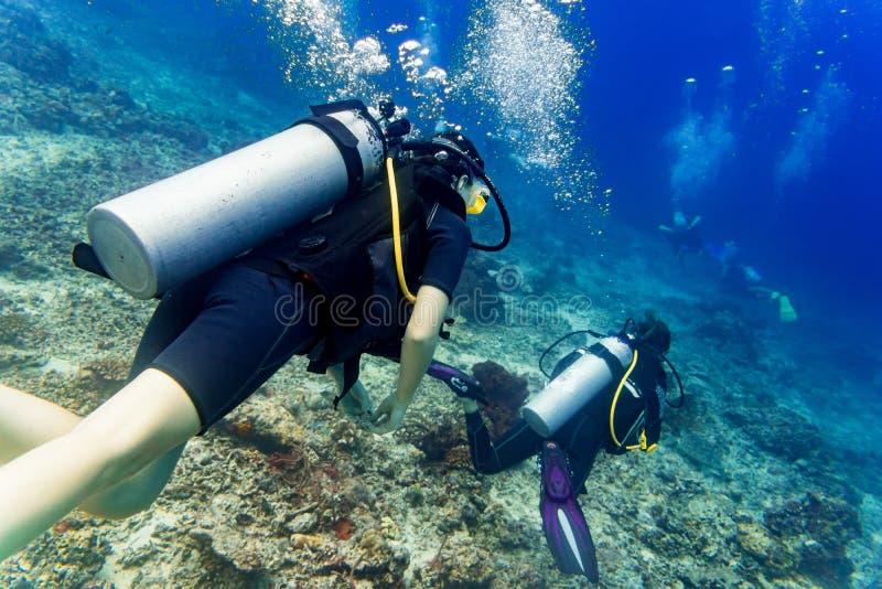 Dwa nurków akwalungu pikowanie w tropikalnym morzu przy rafą fotografia stock
