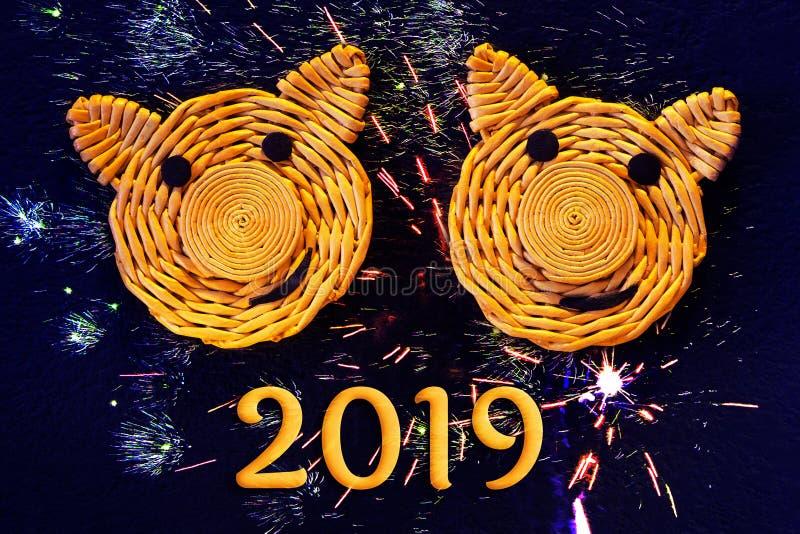 Dwa one uśmiechają się twarzy świnie, symbole 2019 na Chińskim horoskopie na ciemnym tle z imitacją fajerwerki, - zdjęcie royalty free