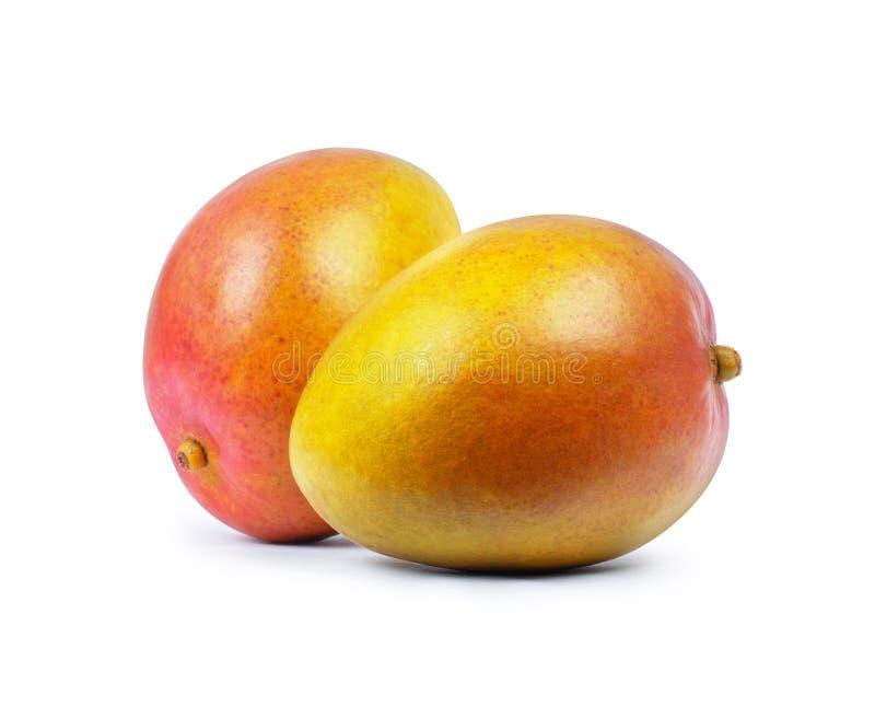 Dwa owoc mangowy zakończenie odizolowywający na białym tle fotografia royalty free