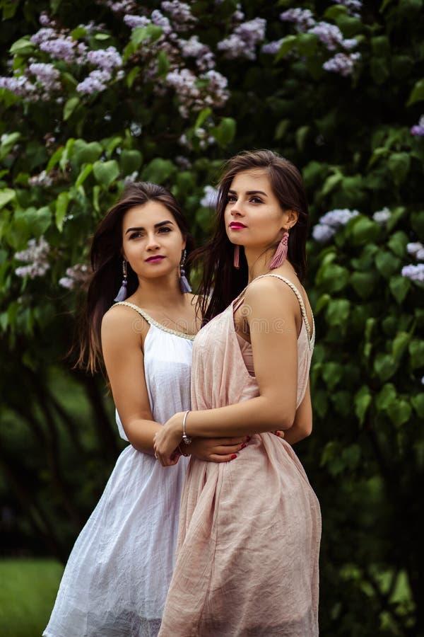 Dwa pięknej bliźniak młodej kobiety w lecie ubierają blisko kwitnącego bzu zdjęcia stock