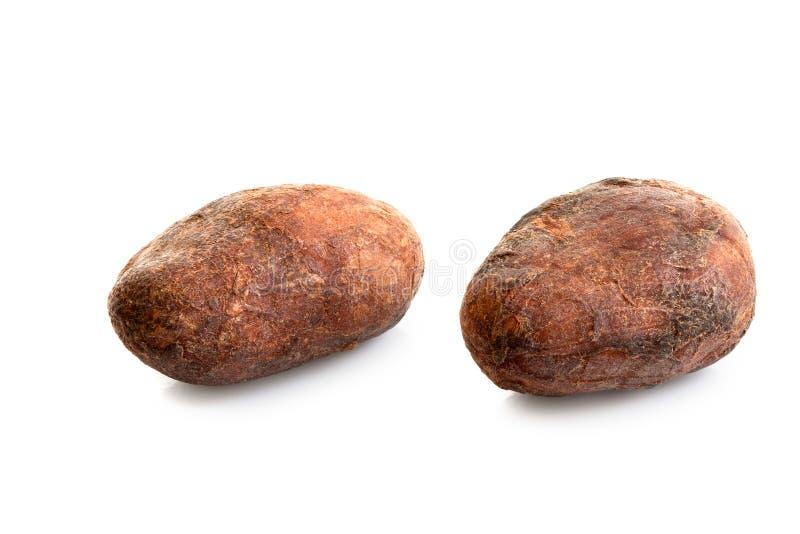 Dwa piec unpeeled kakaowe fasole odizolowywać na bielu zdjęcia royalty free
