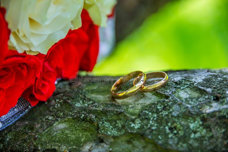 Dwa pierścionku w tle zdjęcia stock