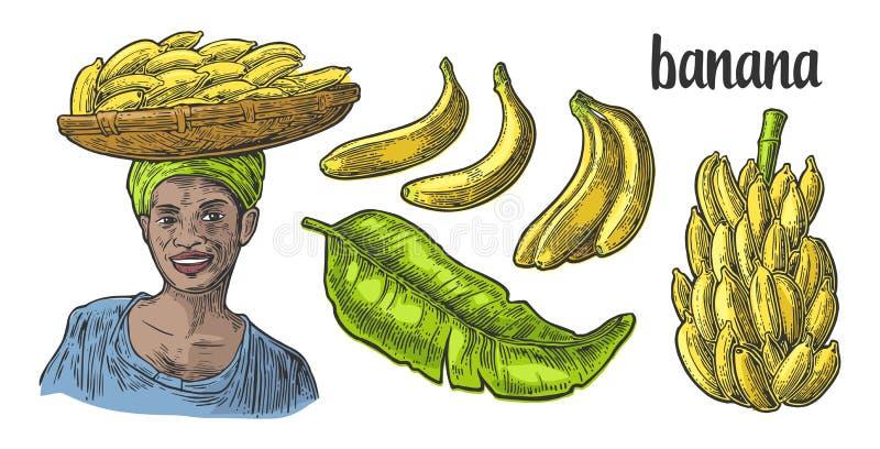 Dwa pojedynczy i wiązki świeży banan z liściem Afrykańska kobieta niesie kosz z owoc na jej głowie ilustracji