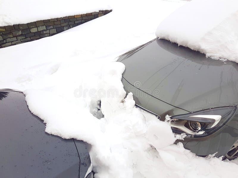 Dwa popielatego samochodu zakopującego pod śniegiem obraz royalty free