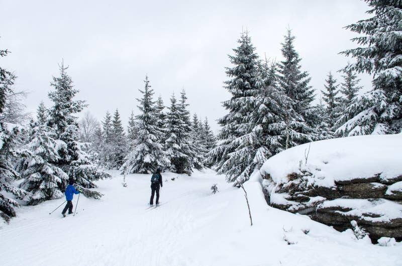 Dwa przez cały kraj narciarka w Jizera górach obraz royalty free