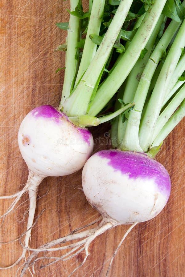 Dwa purpur wierzchołka organicznie rzepa obrazy stock