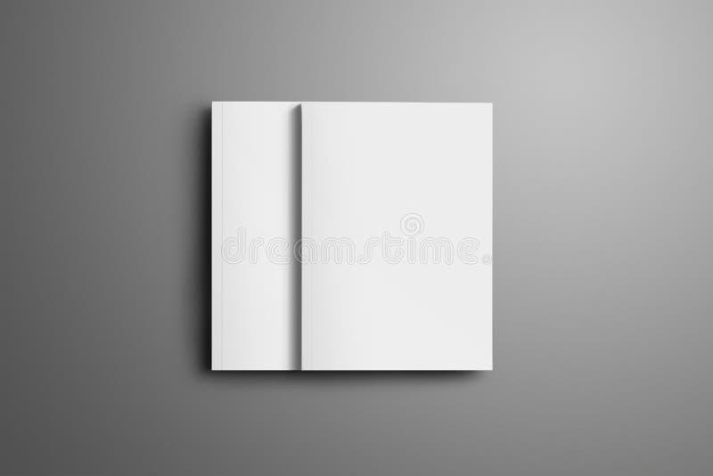 Dwa puste miejsce zamykał A4, A5 broszurki z miękkimi realistycznymi cieniami ilustracji