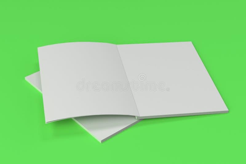 Dwa pustego bielu broszurki otwarty egzamin próbny na zielonym tle ilustracji
