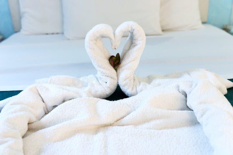 Dwa ręcznikowego łabędź na łóżku w pokoju hotelowym zdjęcia stock