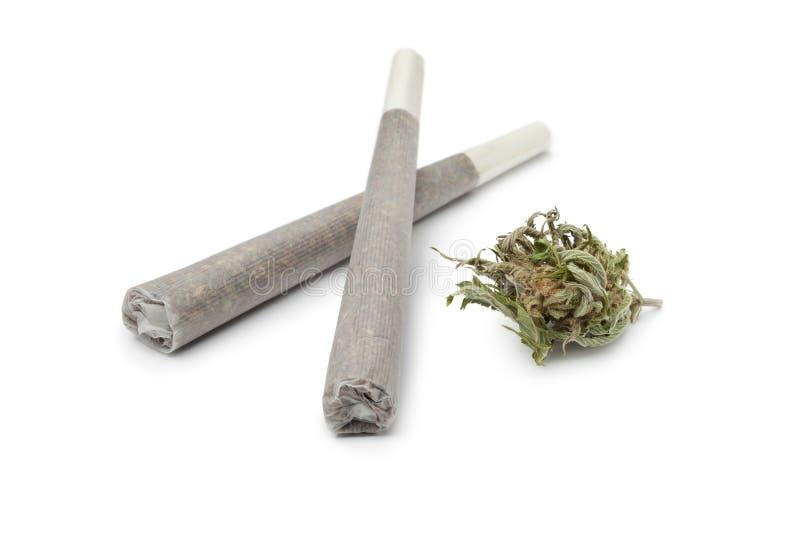 Dwa reefers z marihuana pączkiem fotografia royalty free