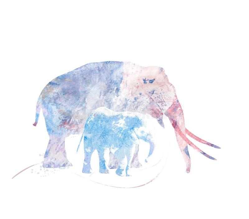 Dwa słoni akwarela ilustracji